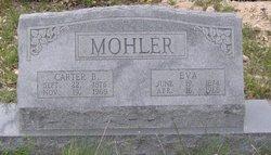 Carter Burnett Mohler