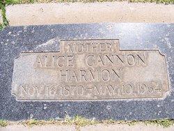 Alice Cannon <I>Woodbury</I> Harmon