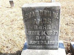 Seaborn W. Amos