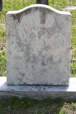Henry David Mintz