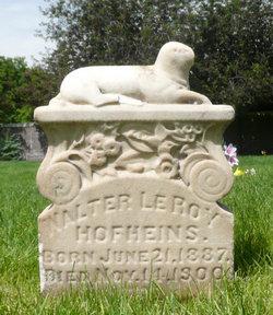 Walter LeRoy Hofheins