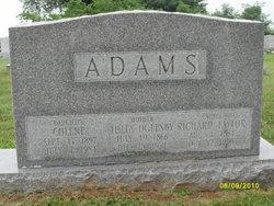 Richard Taylor Adams