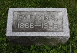 Evelyn S Mitchell