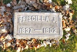 Priscilla Jane Babcock