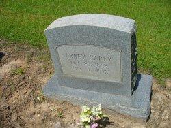 Abbey Carey