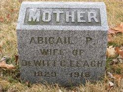 Abigail P <I>Comfort</I> Leach