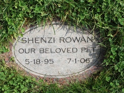 Shenzi Rowan