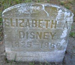 Elizabeth A. Disney