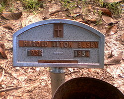 Harold Alton Busby
