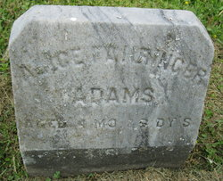 Alice Fahringer Adams