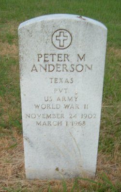 Peter M Anderson
