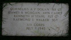 Sgt Raymond Dale Walker
