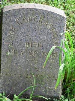 Jane Cary Harrison