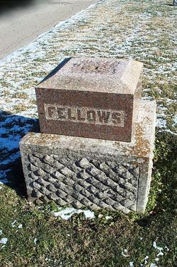 Charles Fellows