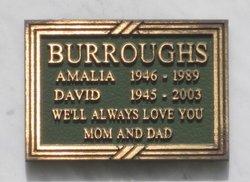 David Burroughs