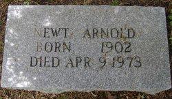 Newt Arnold