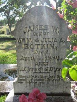 James W. Botkin