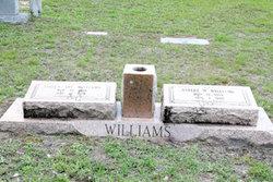 Albert Warren Williams