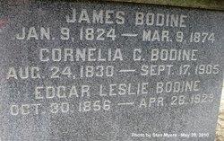 Cornelia Catherine <I>Holmes</I> Bodine