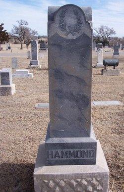 Sarah Ellen <I>Ralston</I> Hammond