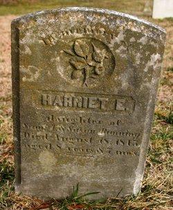 Harriet E Banning
