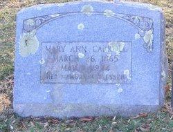 Mary Ann <I>Duncan</I> Carroll