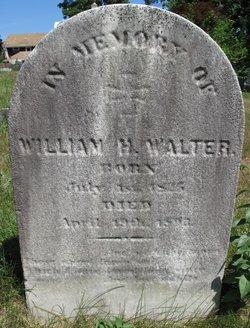 William H Walter