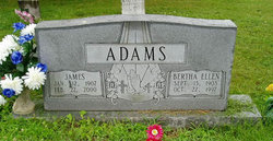 Bertha Ellen <I>Alexander</I> Adams