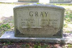 Narcisous Virginia <I>White</I> Gray