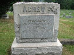 Abram Agnew