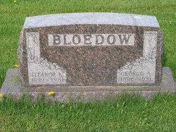 George Albert Bloedow
