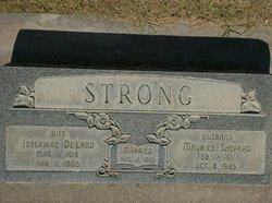 Josephine W <I>Deland</I> Strong