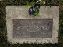 Harry Edwin Clodius