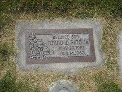 David William Pino, Jr