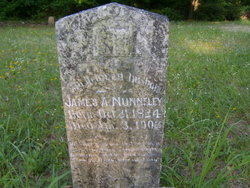 James A Nunnelly