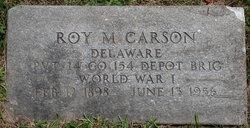 Roy M Carson