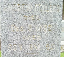 Andrew Fellers