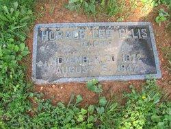 Horace Lee Ellis