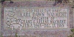 Kari Dawn Wayment