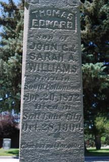 Thomas Edward Williams