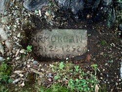 W. R. Morgan