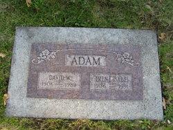 David W. Adam Jr.