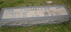Lucinda Jane <I>Woolley</I> Chambless