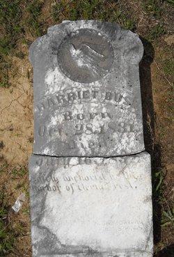 Harriet <I>Johnson</I> Buse