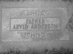 Arvid Henry Anderson