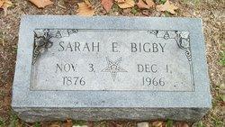 Sarah Elizabeth <I>Douglas</I> Bigby