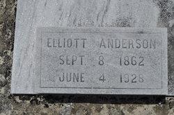 Elliott L Anderson