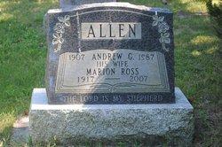 Andrew Gold Allen