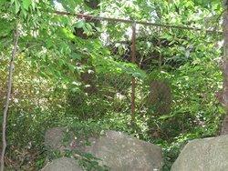Mitchell Burial Ground