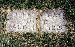John Strand Ray